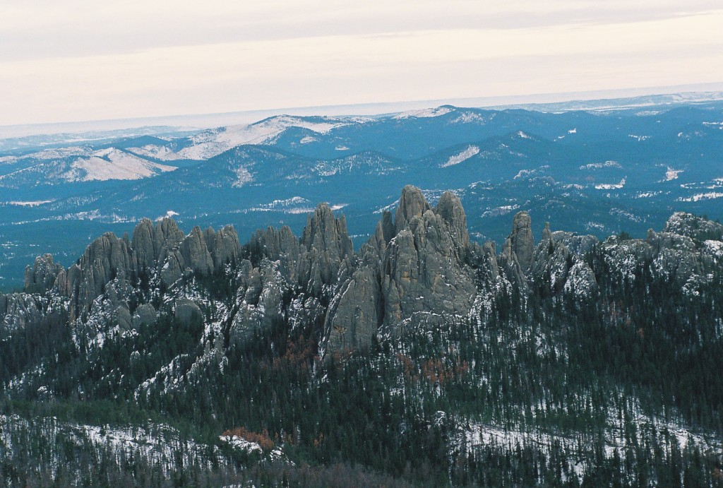 The Black Hills National Forest