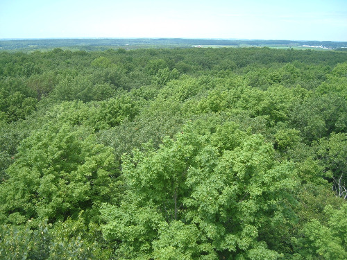 Parnell Tower North Kettle Moraine State Forest