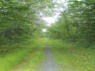 Tuscobia Trail