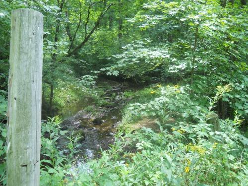 Tuscobia Creek