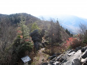 Mt. Cammerer Trail