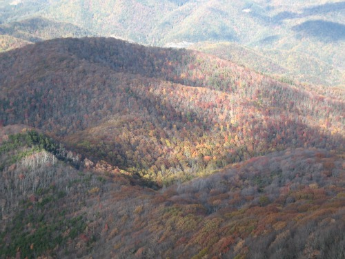 Mt. Cammerer Great Smoky Mountains