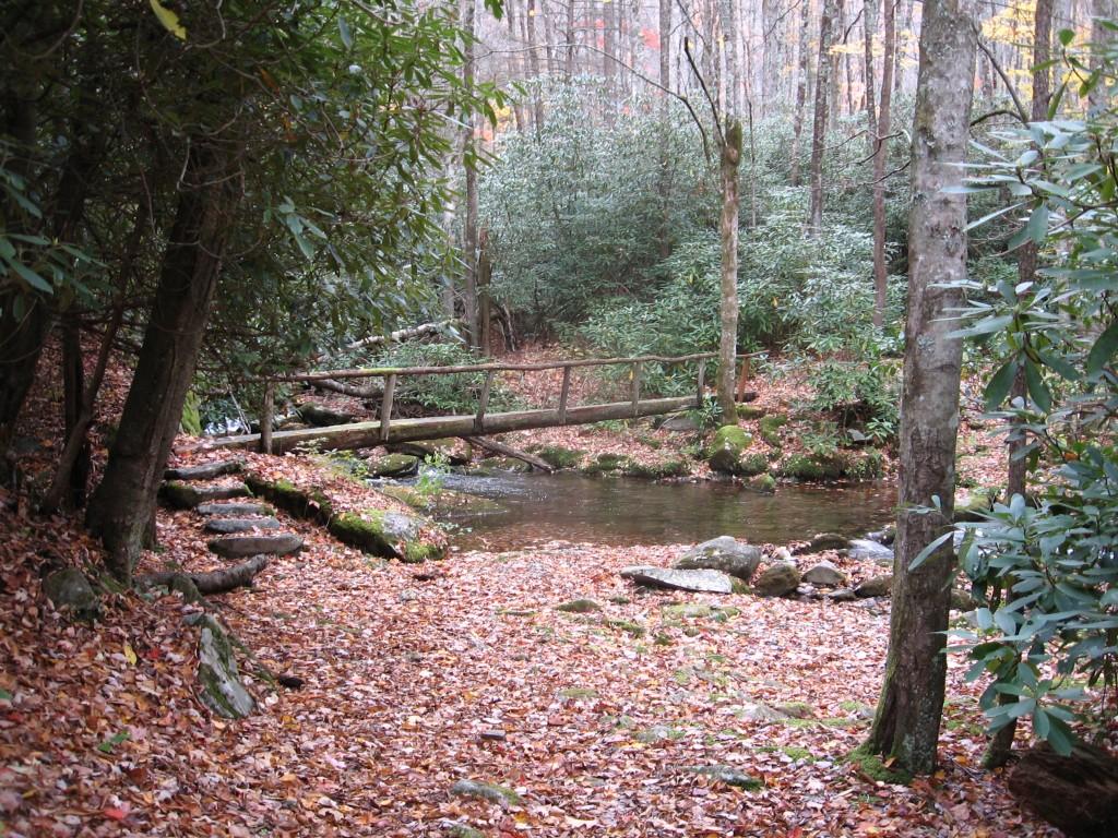Swallow Fork Trail Smoky Mountains