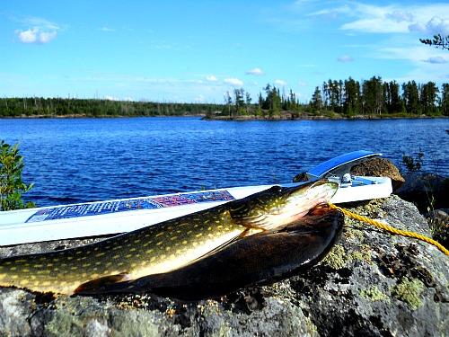 fishing Quetico