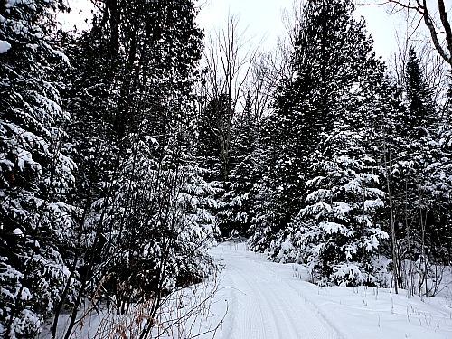 Palmquist Farm Wisconsin cross-country skiing