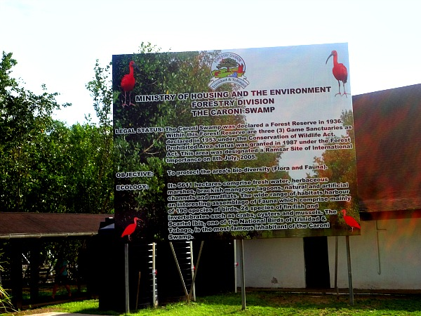Caroni Swamp Trinidad & Tobago