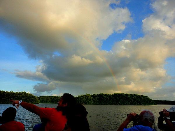 Rainbow Caroni Swamp Trinidad & Tobago