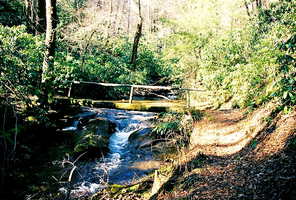 Great Smoky Mountains hiking trail