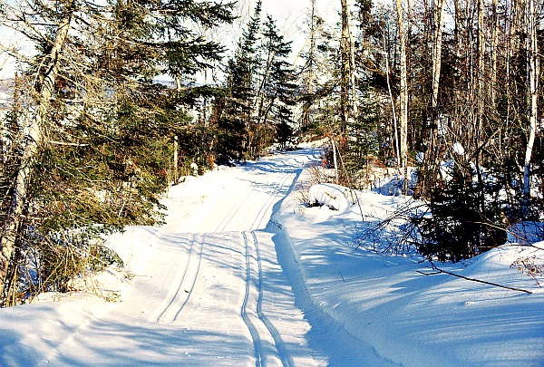 Cross-country skiing in Minnesota