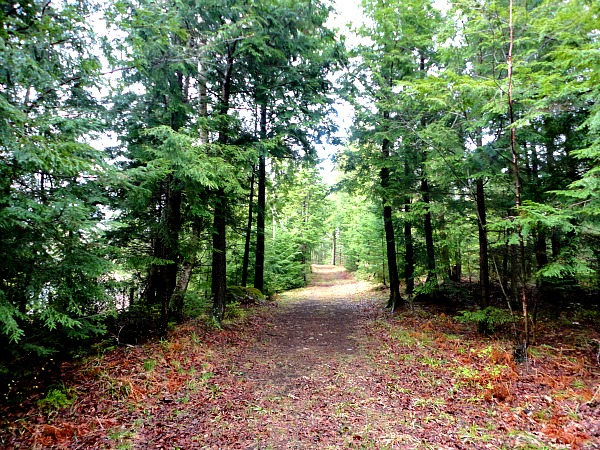 Timm's Hill Trail Wisconsin