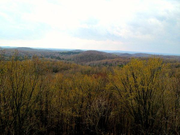 Hiking Timm's Hill