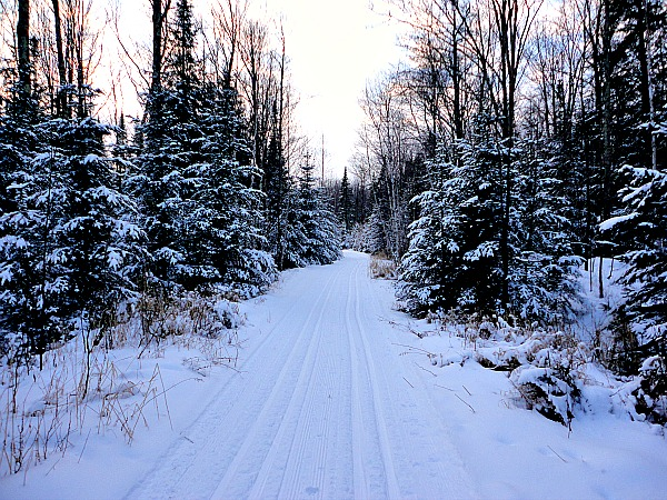 Palmquist Farm cross-country skiing