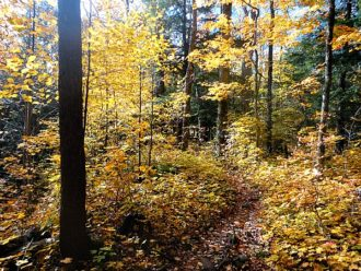North Country National Scenic Trail Michigan