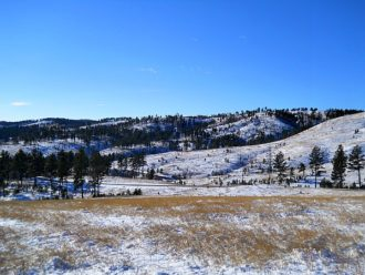 Custer State Park South Dakota winter