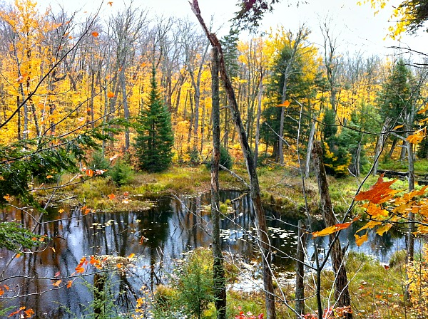 Porcupine Mountains Michigan