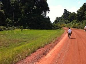 Anaconda Iwokrama Rainforest