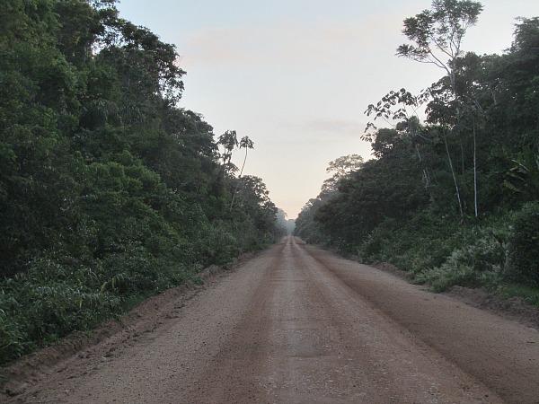Georgetown-Lethem Road Iwokrama Guyana
