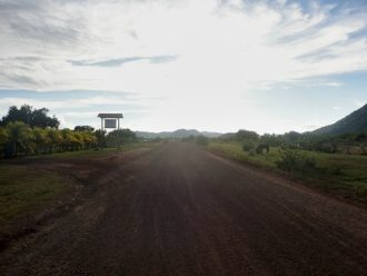 Guyana Oasis