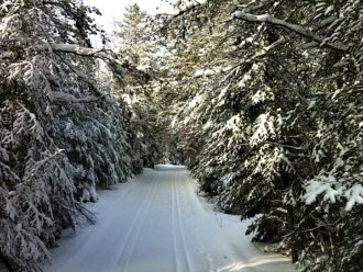 Ham Lake Ski Trail
