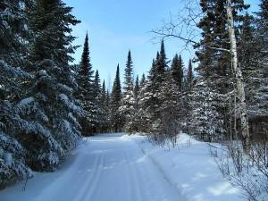 Gunflint Trail cross-country skiing