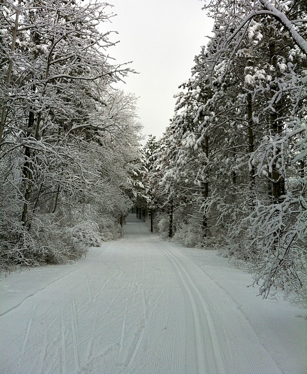 South Kettle Moraine State Forest Wisconsin