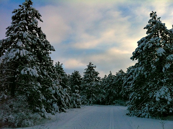 South Kettle Moraine State Forest
