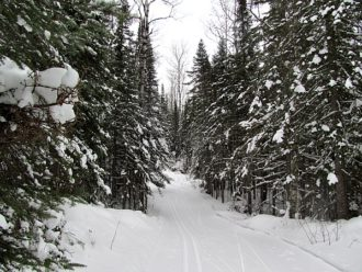 Pincushion Mountain cross-country ski trail