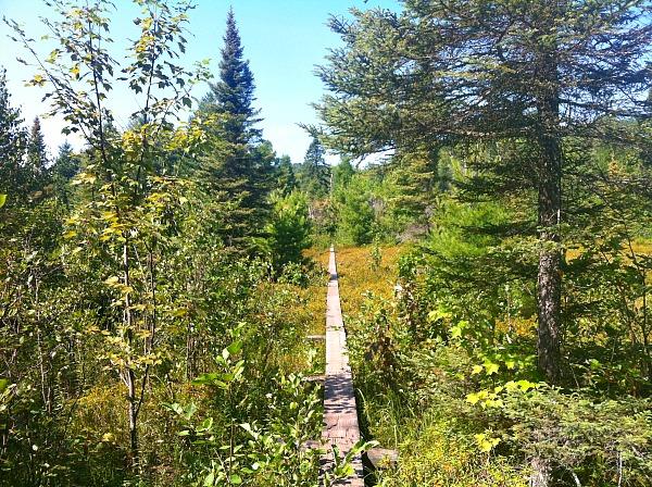 Isle Royale National Park hiking