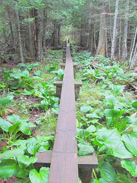 Isle Royal National Park Michigan