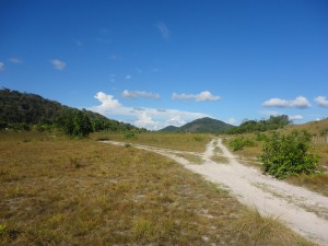 Guyana Rupunini