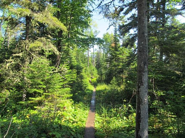 Gaard One preserve wilderness