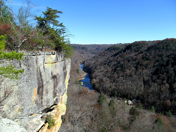 Five Big South Fork day hikes Angel Falls overlook Big South Fork