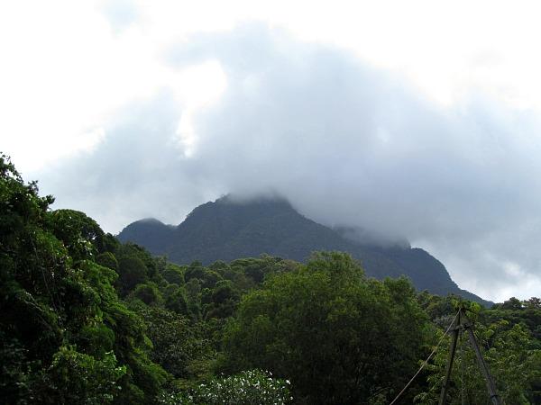 Mt. Santubong Borneo