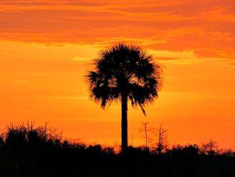 Fakahatchee Strand sunset Florida