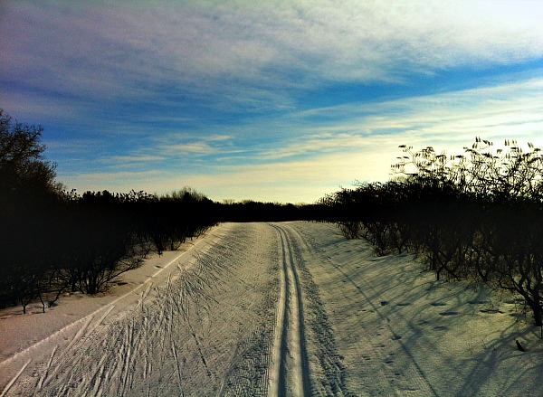 Nordic Blue Trail Kettle Moraine