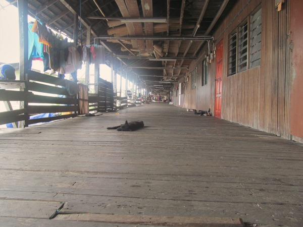 Borneo longhouse adventure