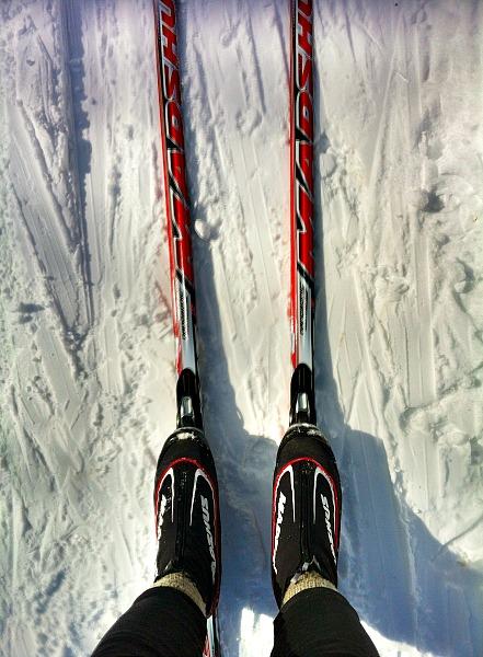 Madshus skis