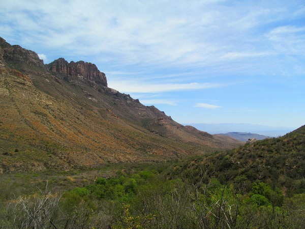 Chisos Mountains vs. Chihuahan Desert