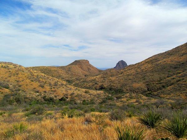 Big Bend Chihuahuan Desert