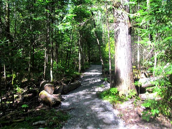 Eau Claire Gorge Trail