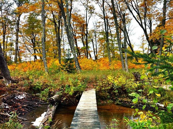 Pictured Rocks fall foliage