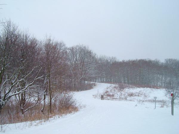Moraine Hills winter