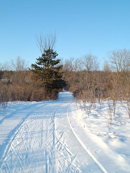 Rock Cut State Park cross-country ski trail