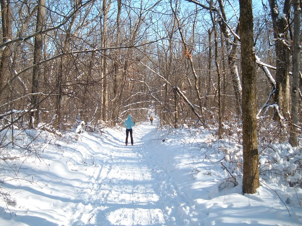 Chicagoland cross-country skiing