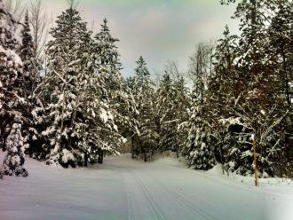 Minocqua Winter Park trail