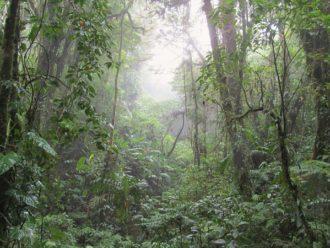 hiking Santa Elena