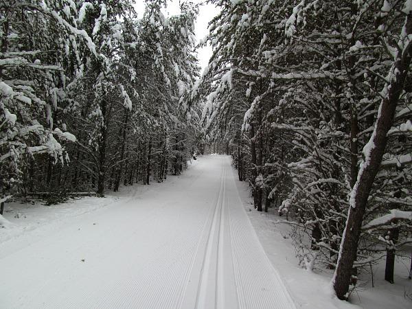 Minocqua Winter Park cross-country skiing