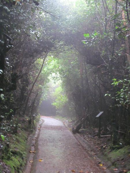 Poás Volcano hiking