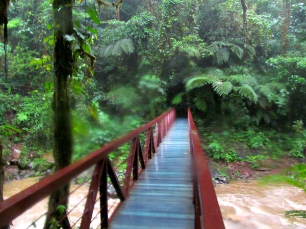 River La Paz Costa Rica