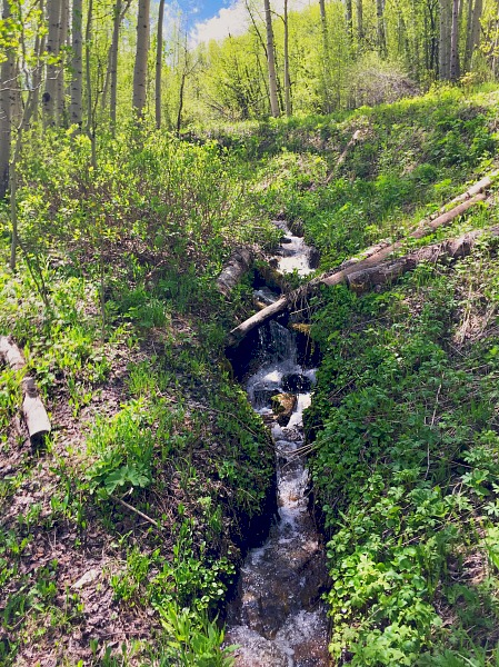 Vail Mountain creek